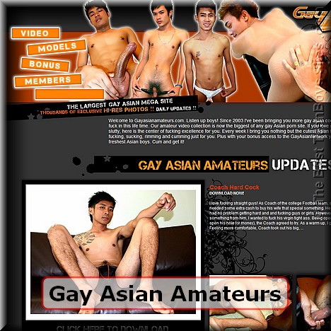 Screen capture of Gay Asian Amateurs (made 31/05/2011)