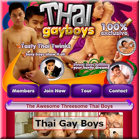 Screen capture of Thai Gay Boys (made 31/05/2011)
